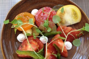 Salads, Side Dishes and Sauces